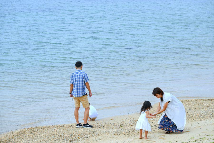 シャニシャニビーチについて